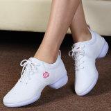 Dame Shoes en Schoenen van de Manier van de Schoonheid of van Vrouwen de Dansende
