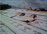 100% pp a fait l'Underlayment de toiture de membrane de toit avec du ce et le TUV