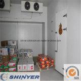 Salle de stockage à froid pour Apple orange banane poire
