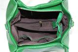 Modèles européens verts des sacs à main pour les collections de la fierté des femmes