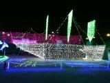 Decoratie van de Vakantie van de LEIDENE Lichten van Kerstmis de Netto Openlucht