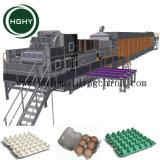 Los residuos de moldeo de Hghy pulpa de papel de la línea de producción de la bandeja de manzana