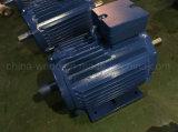 Motore elettrico a tre fasi Y2-160L-2 con l'alta qualità