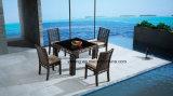 فندق بركة جانب ألومنيوم خارجيّة [رتّن] كرسي تثبيت & طاولة يتعشّى مجموعة ([يت607])