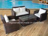 Sofà di vimini del rattan della mobilia impostato per il giardino con il blocco per grafici di alluminio