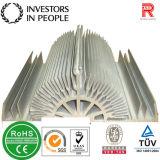 Profil en aluminium/aluminium extrudé radiateurs (RAL-170)