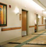 De Leuningen van het Ziekenhuis van de nieuwe Technologie en van het Type