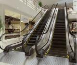 Escada rolante comercial do controle de Vvvf com 35 largura da etapa do grau 1000mm/800mm/600mm