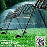 Máquina lateral da irrigação do movimento da Dois-Roda da agricultura para a venda