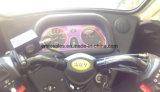 Drei Rad-elektrisches Auto mit Qualität 60V