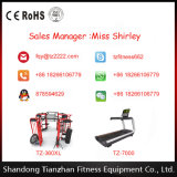 Ginásio Fitness Equipment / Placa Tree
