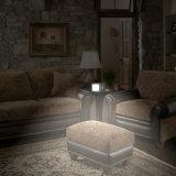 lumière Emergency du Lumière-Contrôle 8W de 20PCS DEL/lampe de mur économiseuses d'énergie