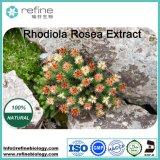 Rhodiola Rosea Extract / Salidroside Rosavin /