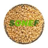 NPK wasserlösliches Fertilzier granuliertes Düngemittel 15-10-17+Te