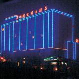 선형 관 Ce/UL/RoHS (L-227-S48-RGB)를 점화하는 LED 매체 정면