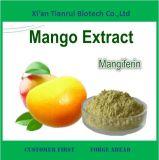 L'usine fournit directement une poudre naturelle d'extrait de pure mangue
