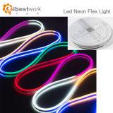 12V éclairage décoratif de corde du câble DEL de lumière de vacances d'usager extérieur d'intérieur au néon de Valentine
