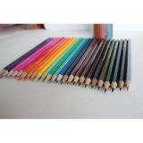 Haut niveau de qualité 24 crayons de couleur dans le tube d'étain, fixé au crayon de couleur