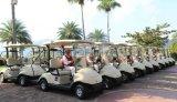 EEC Approved Китай Made 2 Seat Battery - приведенное в действие Electric Aluminum Golf Car