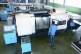 De Pijp van het Type van Systeem P/Pn van de Brandstofinjectie van de Vervangstukken van de dieselmotor (DSLA145P269/0 433 175 037)