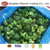 Haut de la qualité de brocoli congelés coupe IQF