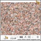 G611 Countertop van het Graniet van de Amandel Mauve, G611 Goedkoop Countertops van het Graniet