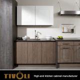 De mooie Deuren van de Keukenkast met het Schilderen 2 PAC Afwerking TV-0468