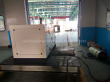 60Hz 3 Phase 15kVA petit générateur de gaz naturel pour la maison