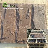 Beau carrelage mural de champignons de grès brun pour la Villa la clôture de la colonne