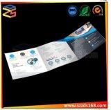 Pasta de papel A4 Customered com cartão de visitas
