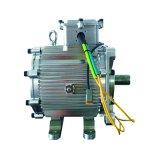 Energie - besparing 5kw 2500rpm 19n. M de Permanente Synchrone Motor van de Magneet
