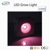 200W LED는 상업적인 플랜트를 위한 가벼운 가득 차있는 스펙트럼을 증가한다