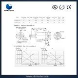Motore di CC utilizzato per il pulitore, fon, m/c, stampante, distributore automatico
