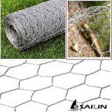 Rede de fio sextavada de Sailin para a cerca das aves domésticas