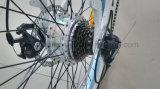 250W電気バイクのリチウム電池のディスクブレーキブラシレスモーターアルミ合金LCDの表示En15194 Hongduの電気自転車の人浜の巡洋艦のEバイク