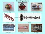 Recambio/piezas/accesorios/componentes del motor de Cummins/Perkins/Lovol/Doosan/Deutz/FAW&Fawde/Xichai/Shangchai/Weifang/Ricardo/Mtu/Volvo/Deutz