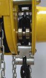 CB-B élévateur à chaînes manuel de 15 tonnes avec le GS de la CE