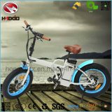 Foldable 350W 전기 자전거 리튬 건전지 뚱뚱한 타이어 접히는 자전거 En15194 Apporved