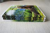 Caderno feito sob encomenda da composição do estudante da escola da manufatura de China