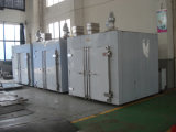 Forno de secagem circulante de ar quente da série CT-C personalizado