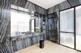 Natural Black Forest Marble Slab / Tile Countertop / Wall / Floor