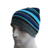 Шлем Beanie Multi цвета Striped теплый