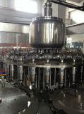 Pianta di coperchiamento di riempimento di iso della spremuta automatica di qualità con controllo del PLC