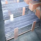 Âme en nid d'abeilles en aluminium oblique augmentée, IEM protégeant le panneau de ventilation utilisé (HR417)