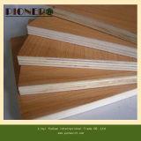 Álamos/ Eucalipto Core para mueble de madera contrachapada de melamina