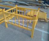 FRP Handlauf/Baumaterial-/Fiberglas-Strichleiter/Zaun-Strichleiter