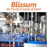 2017 neues Glasflaschen-Bier-füllende Pflanze des Entwurfs-3000bph