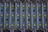 Módulo caliente 45*12m m de Whitesmd5050-2LED LED