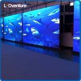 Grande LED video schermo dell'interno di colore completo per i media di pubblicità