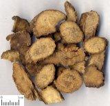 Twotoothed Achyranthes Wurzel/Wurzel Achyranthis Bidentatae